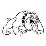 Bulldog 1 Mascot