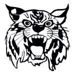 Wildcat 2 Mascot